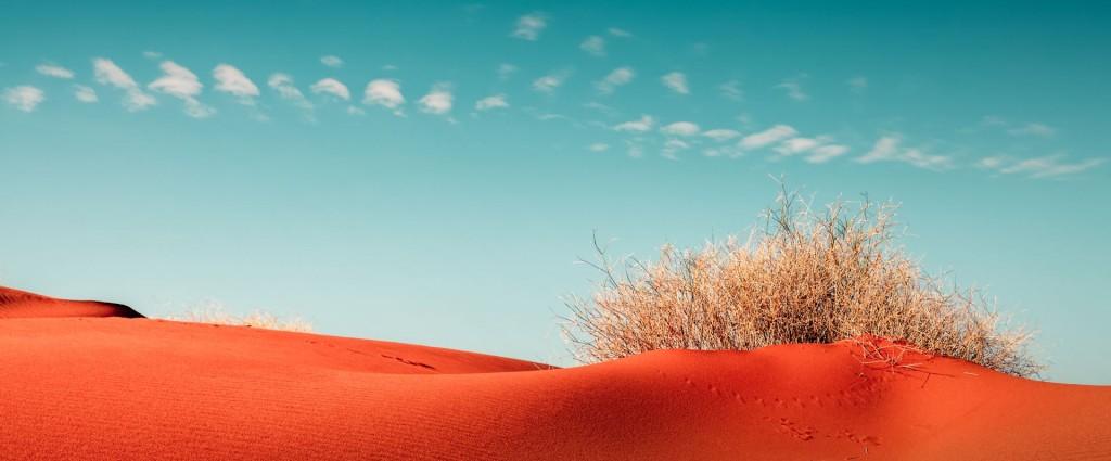 Landscape-Pic 01
