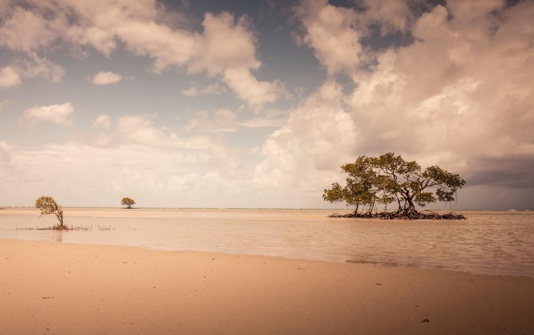 Landscape-Pic 46
